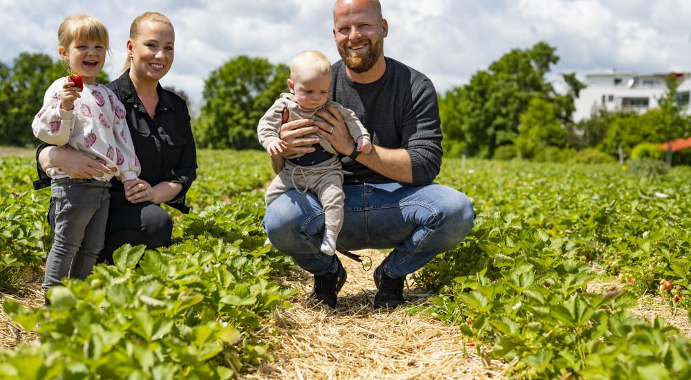 Berühmt für ihre Erdbeeren in Wettingen: Bauernfamilie Lüscher