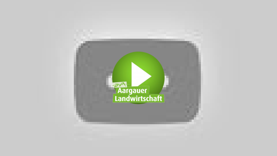 Embedded thumbnail for «Aargau isch fein»