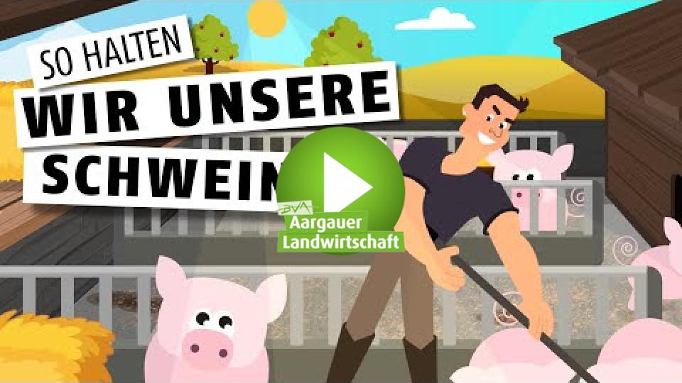 Embedded thumbnail for Glückliche Schweine