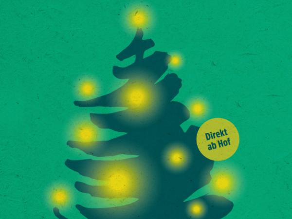 Weihnachtsbäume aus eigenem Anbau